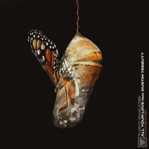 Flight Facilities - All Your Love feat. Dustin Tebbutt (Joakim's Paradise Mix)