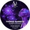 Thomas Barnett - ANCIENT MEDICINE (GROOVE SLAVE REMIX)