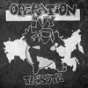 Сила Песен (Operation Ivy - Sound System cover-translation)