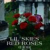 Lil Skies - Red Roses (4B Remix)