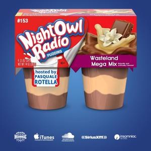 INSOMNIAC - Night Owl Radio Wasteland 2018 Mega-Mix 153 2018-07-27 Artwork