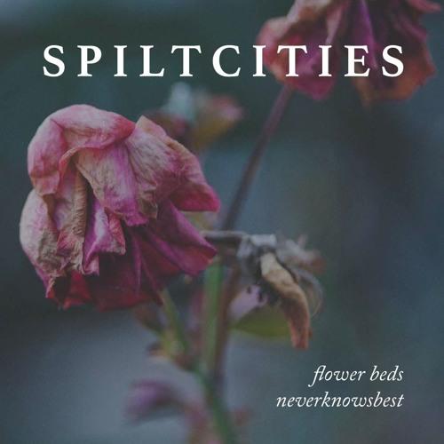 Spilt Cities- Neverknowsbest
