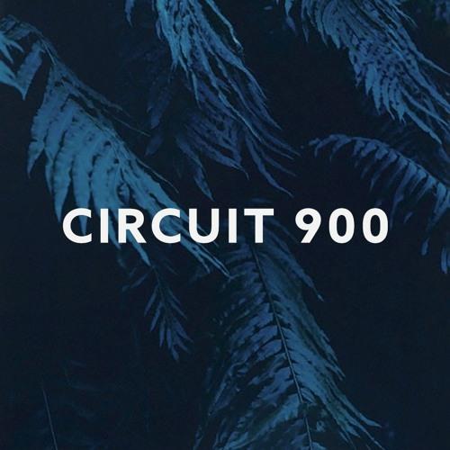 Susumu Yokota - Song of the Sleeping Forest (Circuit 900 Bootleg)