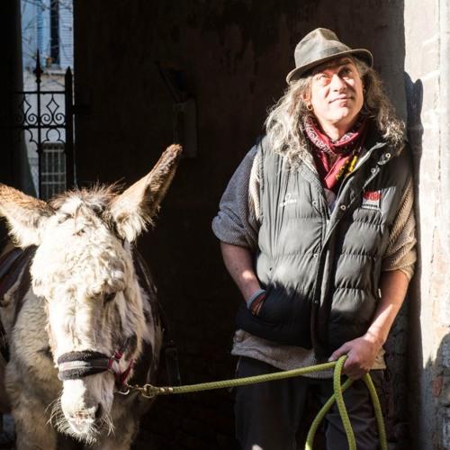 Intervista a Massimo Montanari