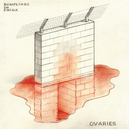 ovaries // ntvrme.