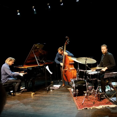 Christoph Stiefel Inner Language Trio - Embracing