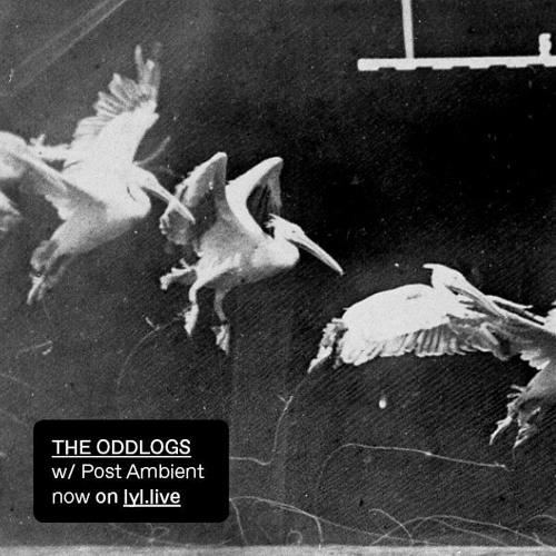 The Oddlogs w/ Post Ambient - 30th June 2017 - LYL Radio
