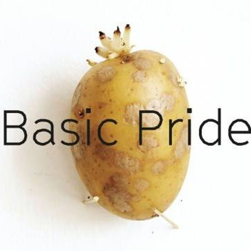 Galerie Klubovna: Basic Pride (Flo Kasearu) EN