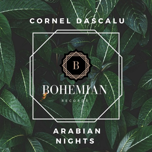 Download Cornel Dascalu - Arabian Nights (Original Mix)