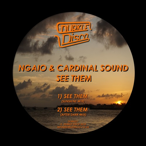 Ngaio & Cardinal Sound - See Them [DURK021] (Jamz Supernova BBC Radio 1 & 1Xtra rips) - OUT NOW