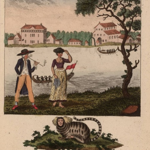 Episode 25: Creepy Diaries of the early Caribbean Slave World with Liz Polcha