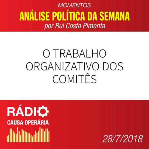 O trabalho organizativo dos comitês