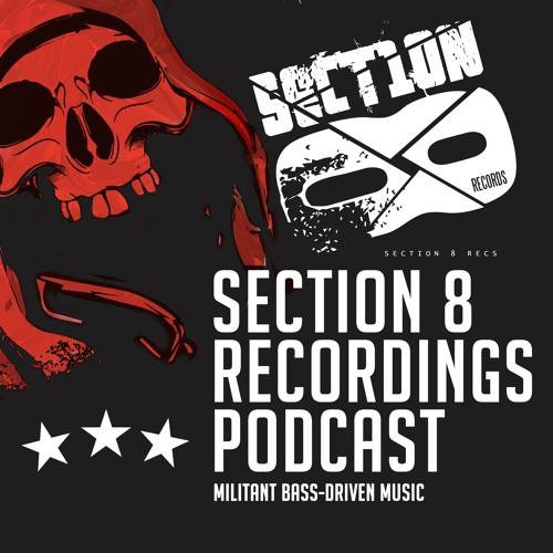 Pareidolia - Section 8 Podcast #13 [SECTION8POD13]