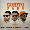 Corito Sano - Tempo X Miky Woodz X Randy Nota Loca | AKOLADOXIS