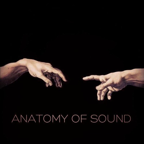 Anatomy of Sound