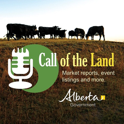 Janice Wirsta: Alberta Open Farm Days & K-Cow Ranch