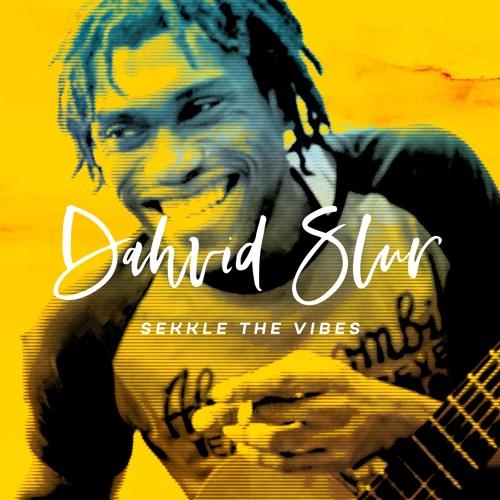 """Sekkle the vibes"" Dahvid Slur available on digital format"