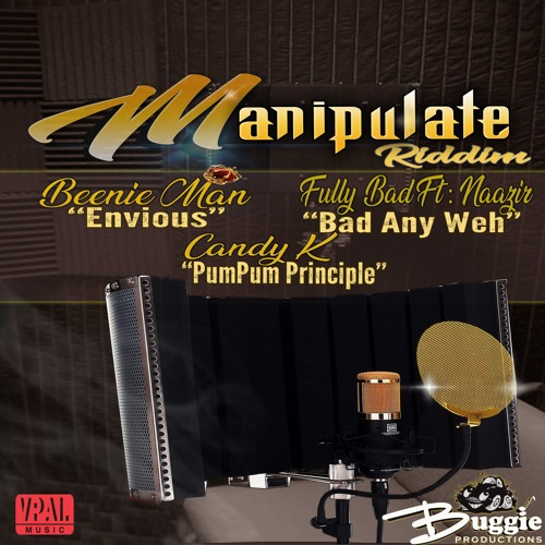 "Candy K ""Pum Pum Principle (Raw)"" [Buggie Productions]"