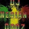 Panjabi MC-Moorni Balle Balle FEAT DJ Nesian Oddz