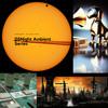 DSNight 61 Dub Techno Tribute Mix (2013)