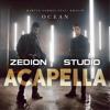 Martin Garrix Feat. Khalid - Ocean (Studio Acapella by ZEDION)