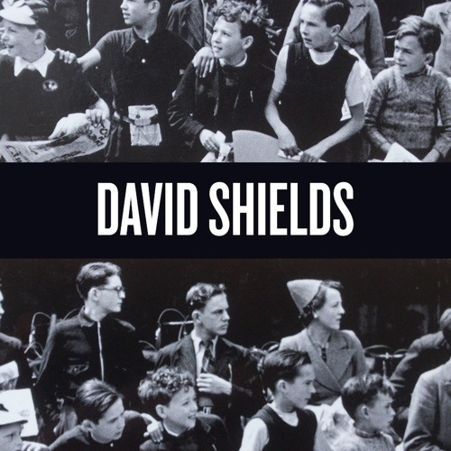 An Interview With Best-Selling Author David Shields
