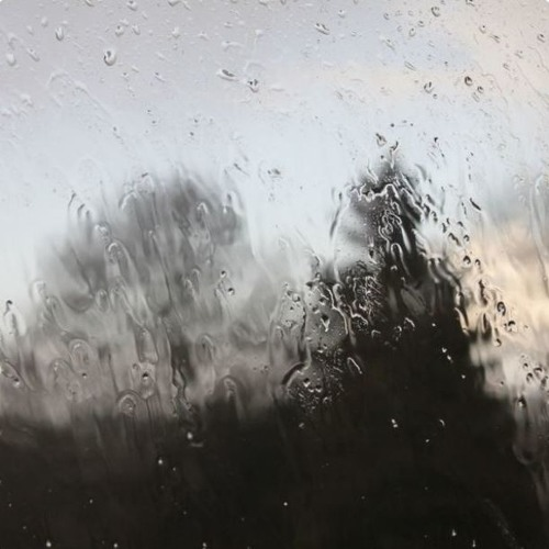 Thumbnail Friday Rain