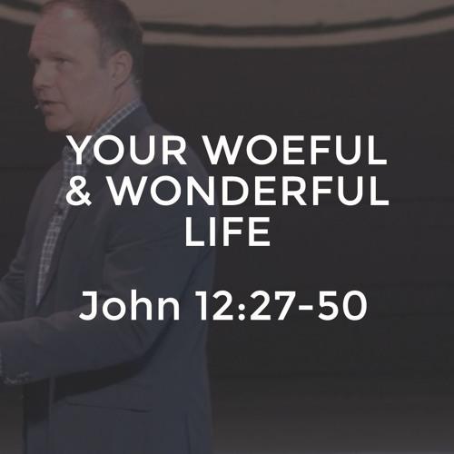 John #27 - Your Woeful and Wonderful Life