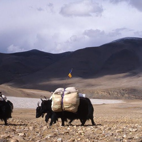 Tibet: Life on the Frontlines of Climate Change