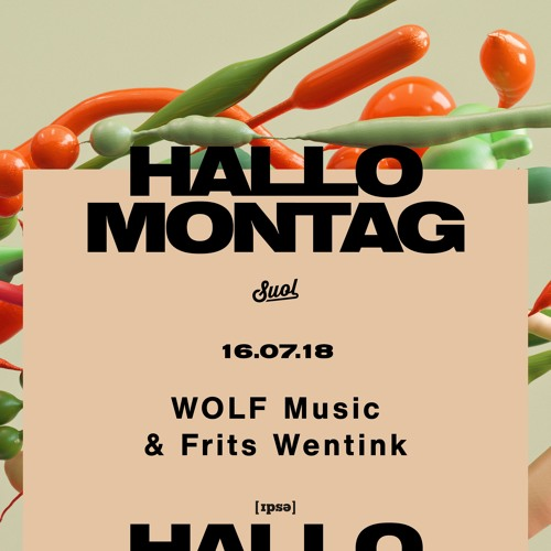 WOLF Music & Frits Wentink @ Hallo Montag Open Air #12 WOLF Music Showcase (16.07.2018)