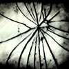 Auxen - Broken Frame