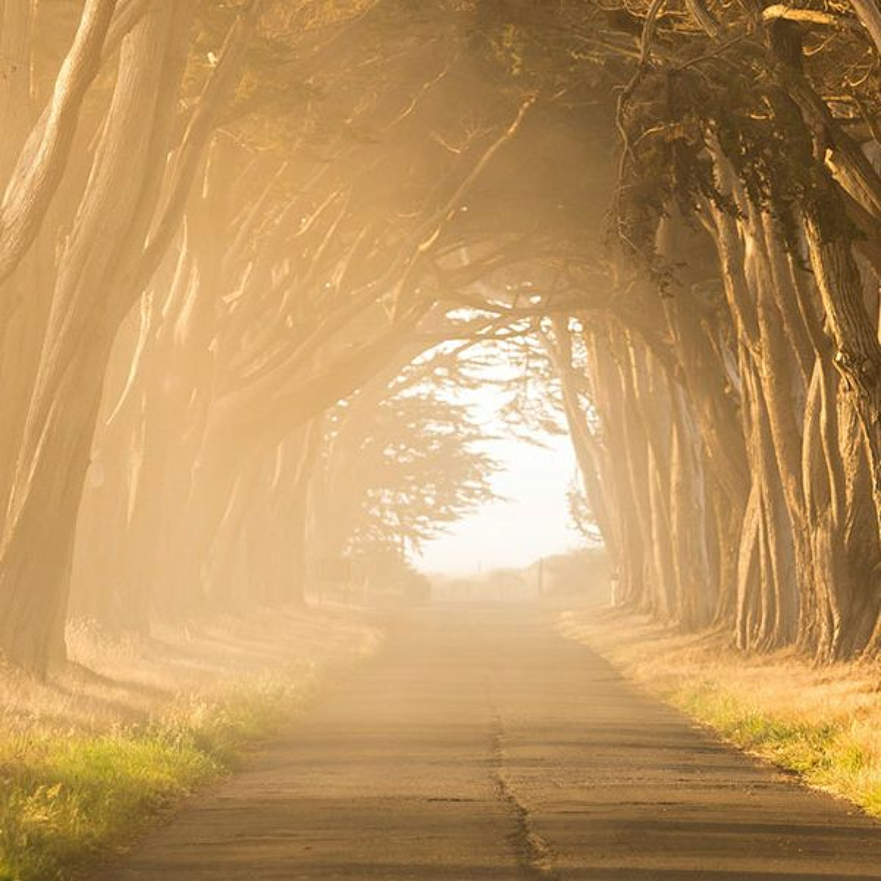 """Is the Path to Eternal Life """"Strait""""..."""