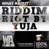 Riddim Riot By Yuja | 1000+ Drums, Serum Presets, Kits, Melodies & More!