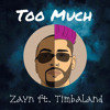 Too Much - Zayn ft. Timbaland | Cover