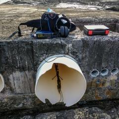 Deep Water Pipeline