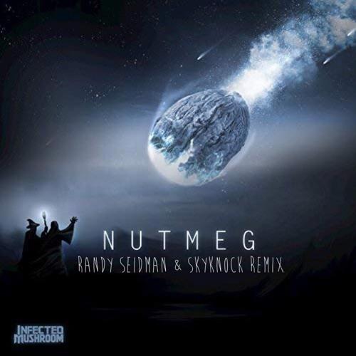 Infected Mushroom - Nutmeg (Randy Seidman & Skyknock Remix) [Free Download]