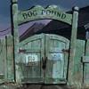 DOG POUND (prod. RO$$)