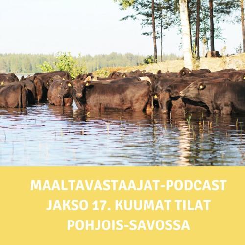 Jakso 17. Kuumat tilat Pohjois-Savossa