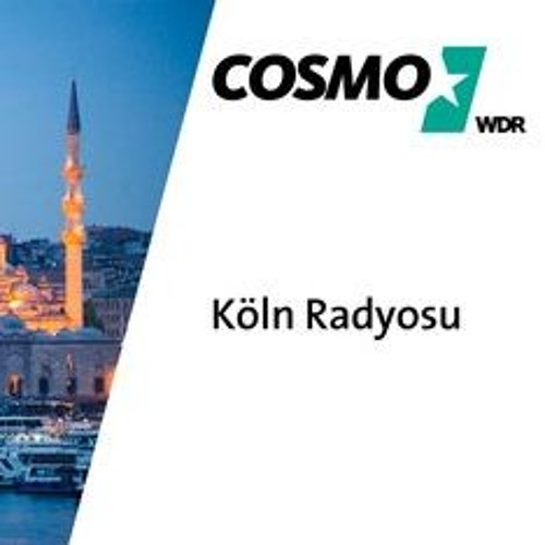Emre Savaş - Estonia E-Residency Interview with Cosmo WDR