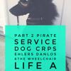 Part 2 Ehlers Danlos Pirate Service Dog CDIF CRPS Part 2 {A chronic illness podcast}