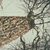 Premiere: Pavel Svetlove feat. Vâlvâ 'Under Your Skin' (Wild Dark & ariaano Remix)