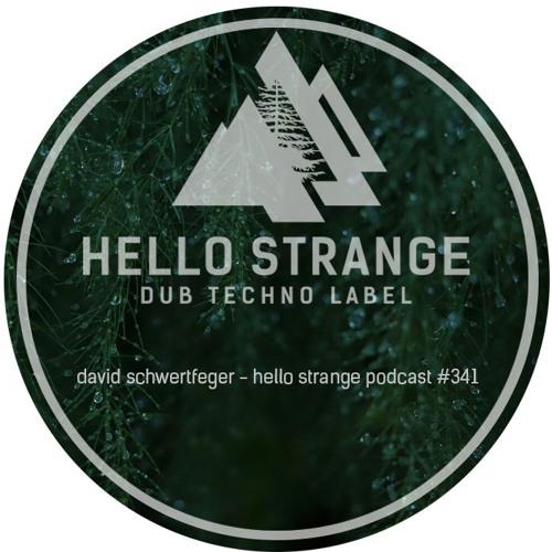 david schwertfeger - hello strange podcast #341 by hello ▽ strange