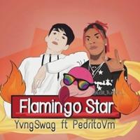 Flamingo Star - Yvng Swag ft. Pedrito Vm