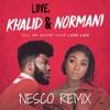 Love Lies (Nesco Remix)