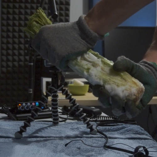 Frozen Celery Squishes and Crunches Multiple Mics
