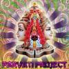 Parvati Project 12/5/18 - NewSchool Goa set By Asura