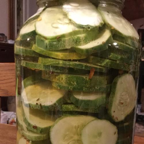 Episode 67 - Refrigerator Pickles