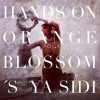 Free Download Niconé Hands On Orange Blossom S Ya Sidi Mp3