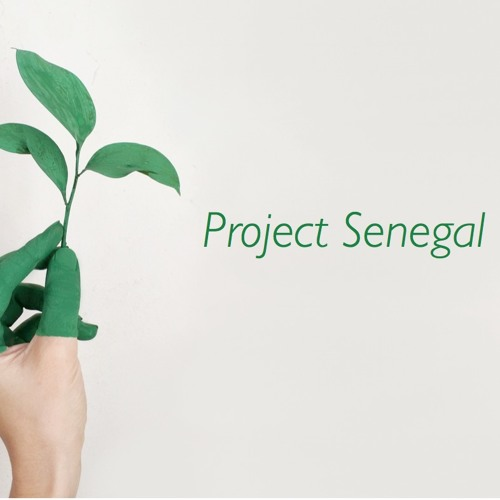 Project Senegal   Fontaine OST