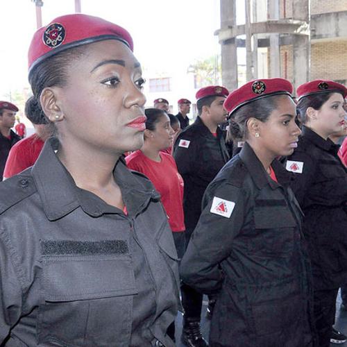 Bombeiros civis de Minas Gerais questionam lei estadual que regulamenta a profissão